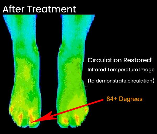 Infrared Heat Map after ReBuilder Treatment